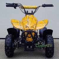 Petrol Quad ATV 49CC Motor Bike with Pull Start