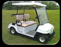 Maini Golf Cart