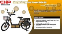 Electric Bike Heavy Duty King B006C-Golden Armor